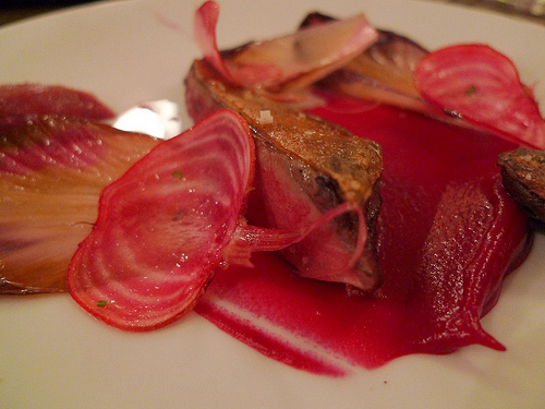Septime by Meg Zimbeck - pigeon with beets and trevise