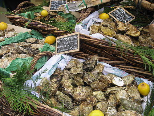 raw oysters in Paris