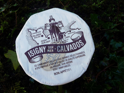 Isigny Camembert (photo: Jennifer Greco)