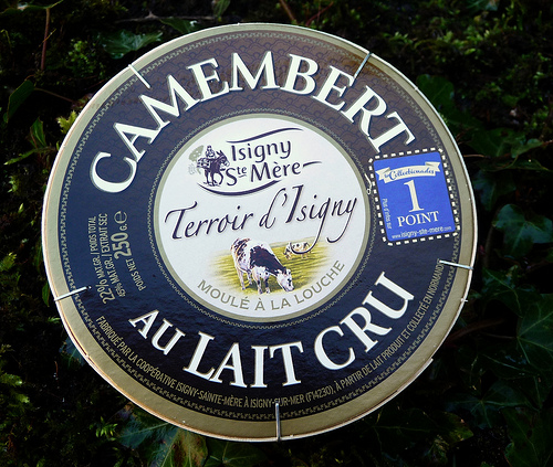 Camembert (photo: Jennifer Greco)